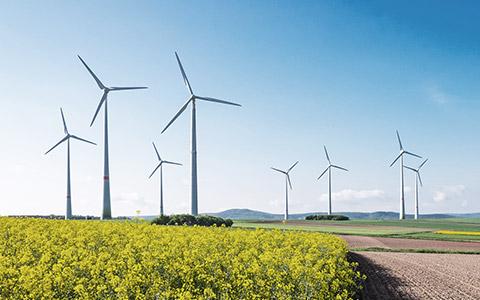 Windkrafträder im Grünen